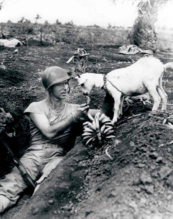 soldado_platanos_cabra_1944